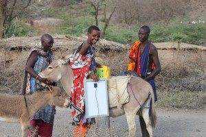 Women mounting the solar panels on donkeys